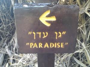 paradise eden
